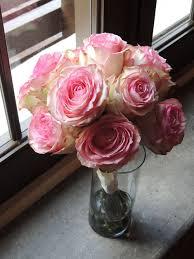 Nueve rosas Espérance