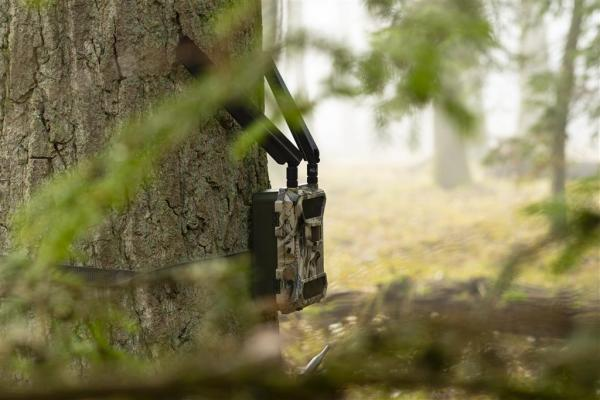 DÖRR Wildkamera 5G - 4 bei Jagdabsehen