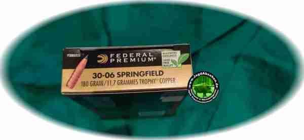 Federal Trophy Copper 30-06 180 bei Jagdabsehen