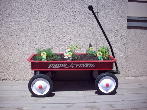 Little Red Wagon Herb Garden