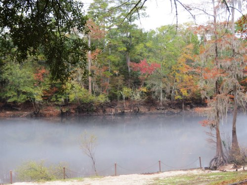 Edisto River in South Carolina