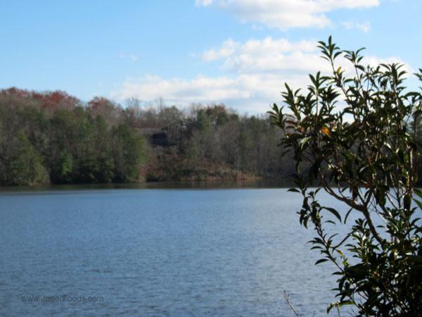 Lake in SC state park
