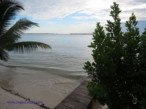 Land for Sale in Belize