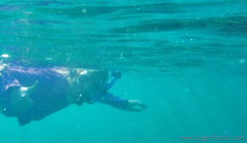 Silke Snorkeling in Belize