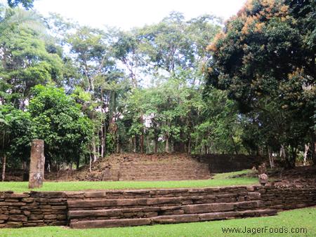 Stelae Plaza Mayan Site