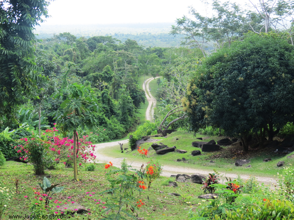 Nim Li Punit - Mayan site in Southern Belize