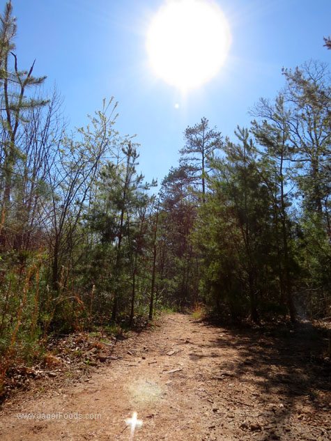 NC hiking trails