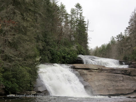 Dupont State Park