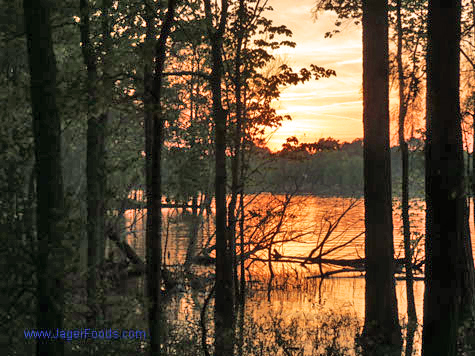 Setting Sun Lake Wateree SP #findyourpark