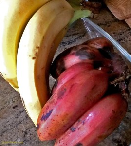 One Bowl Banana Bread Easyrecipe