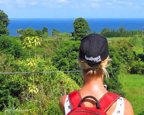 Beautiful ocean view at Botanical World Adventures