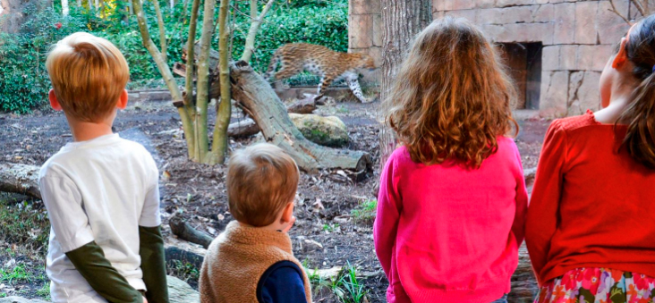 Greenville Zoo a great place for kids