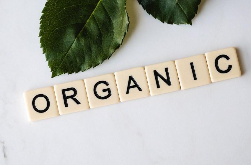 Зміну правила експорту українських органічних продуктів в ЄС можуть відтермінувати