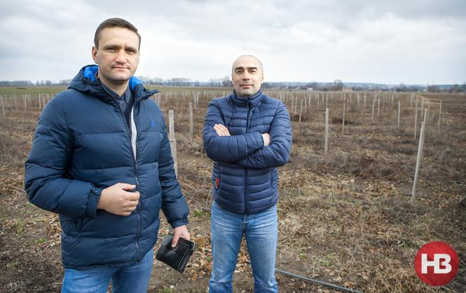 Продались в Европу. Как украинские фермеры плачут, но не сдаются, завоевывая рынок Евросоюза