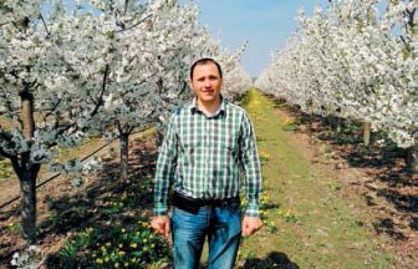Суниця та малина в Україні: ефективний та безпечний захист для отримання високих урожаїв. Практичні рекомендації експерта ТОВ «Самміт-Агро Юкрейн»