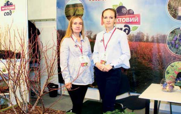 Анна Домбровська: «Сьогодні фермери шукають нові культури і нові підходи». Про моду на ягоди, вплив на ціни і тенденції на ринку саджанців в Україні