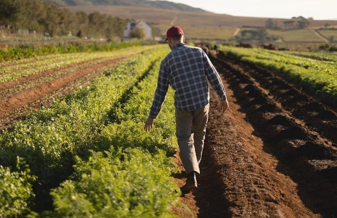 Президент підписав закон про стимулювання фермерських господарств