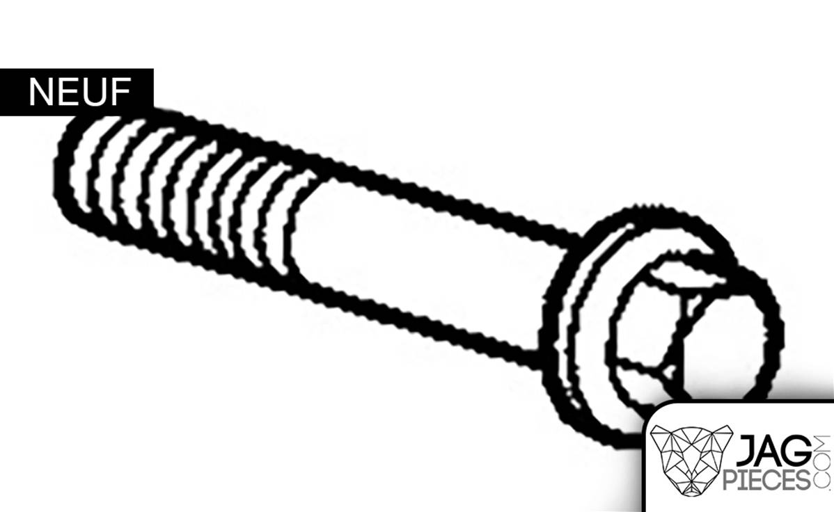 Boulon de tendeur de chaîne M6 x 40 mm référence C2Z2642