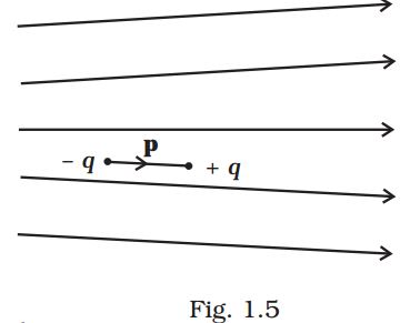 NCERT Exemplar Solutions, 12th Physics, Electric Charges