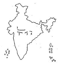 UPSC CDS II 2014 General Knowledge Question Paper Solved