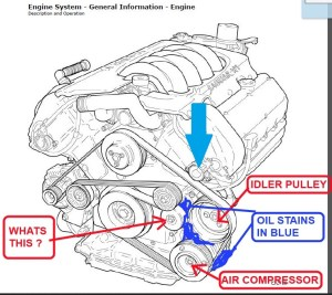 Service manual [Diagram To Install Serpentine Belt 2000 Jaguar Xj Series]  Service Manual