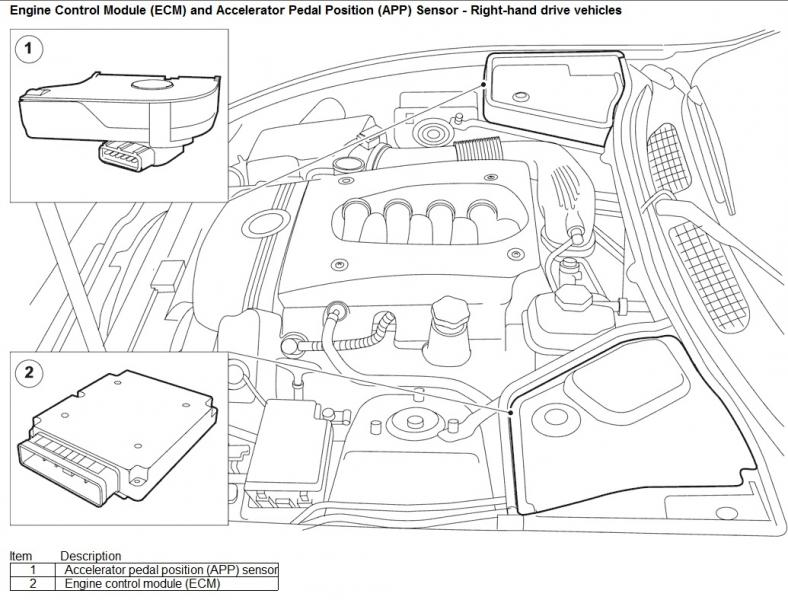Jaguar Xk8 Throttle Body Location, Jaguar, Get Free Image