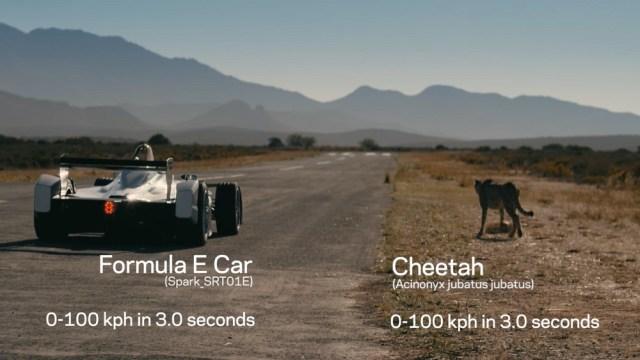 Formula E Cheetah Jaguar