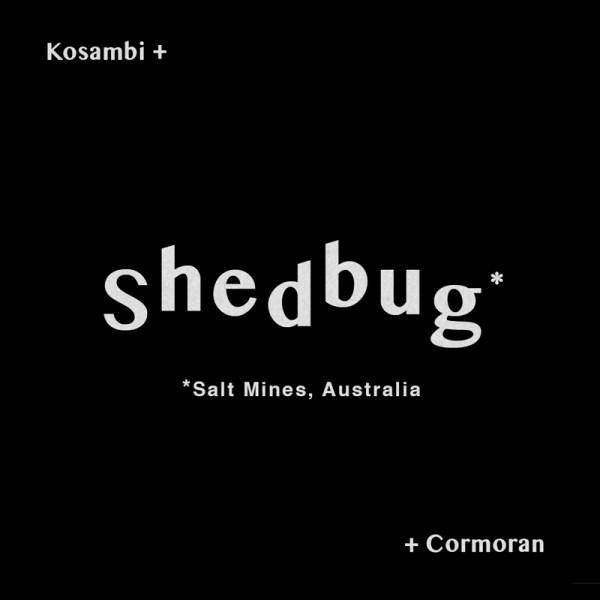 Cormoran and Kosambi present SHEDBUG ( Salt Mines )