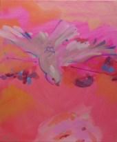 Pink and Grey Galah