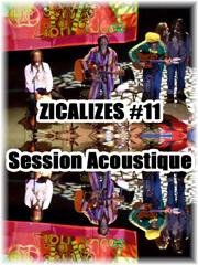 zicalizes 2007 acoustic