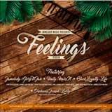 feelings riddim
