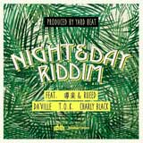 night day riddim