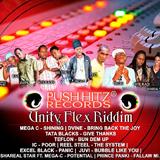 unity flex riddim