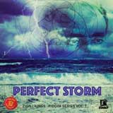 perfect storm riddim