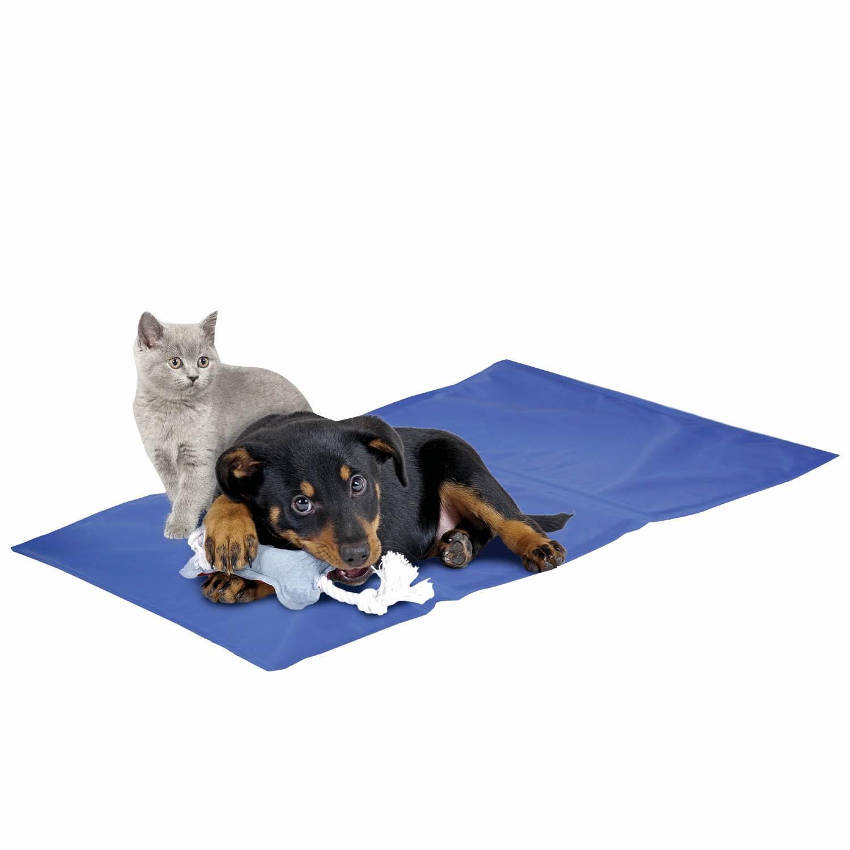 tapis rafraichissant pour chien et chat jaiduchien com