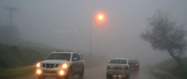 Fog at Salalah