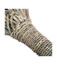 Broom Palm artisanal hand - 46 cm - Ideal for carpets