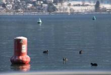 bouée sur le lac d'Annecy