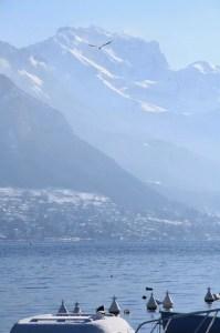 Quai de la tournette Annecy