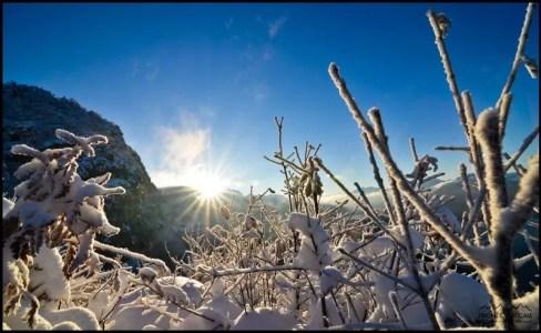 lever de soleil sur la nature enneigée