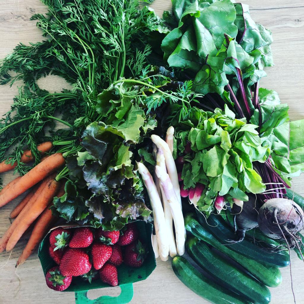 Alimentation durable - Consommer local et de saison