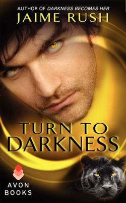Turn to Darkness