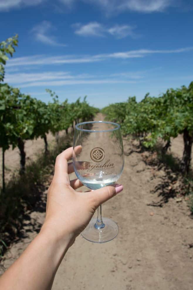 What to expect on the Sunnyslope wine trail outside of Boise, Idaho, in Caldwell, Idaho. Fujishin Family Centers