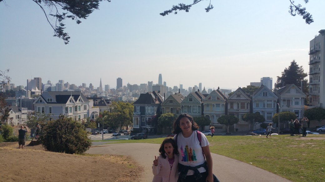 PAINTED LADIES SAN FRANCISCO CALIFORNIA USA