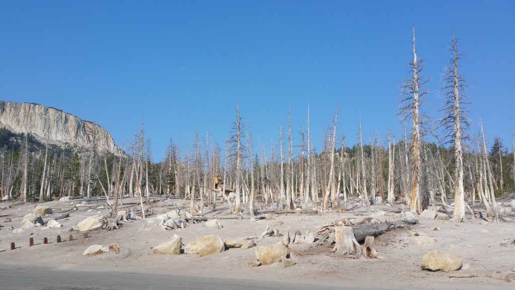 HORSESHOE LAKE MAMMOTH LAKES USA