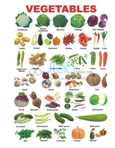 Vegetables charts road traffic signs chart also india rh jaincolab