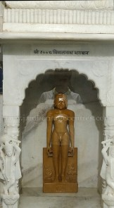 Chulgiri-Digambar-Jain-Parshwanath-Temple-Hill-Jaipur-Rajasthan-India-0024