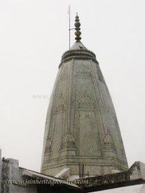 hastinapur_-_badamandir_complex_20111021_1802858105