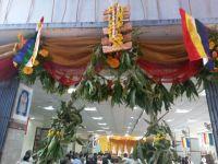 siddhachakra_mahamandala_vidhana__kalpadhruma_pooja_mahotsava_4_20131110_1040260678