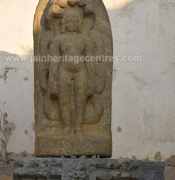 Tirthankar Parshwanath idol, Somnathpur, Karnataka, India.